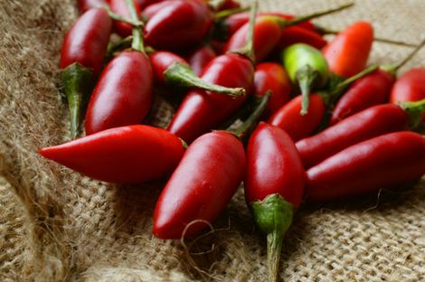 http://xenophilius.files.wordpress.com/2008/09/chillies_lead_wideweb__470x3120.jpg