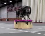 jumpingcheetahrobot